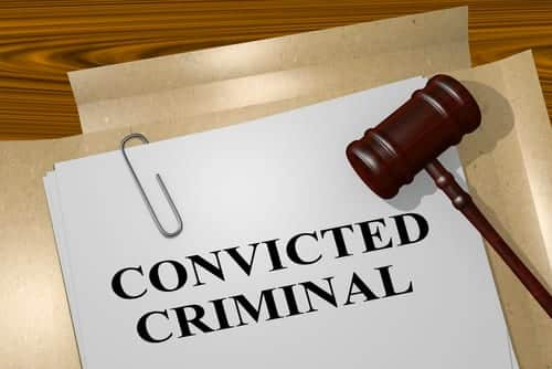 What are the Consequences of a Criminal Conviction in South Carolina?