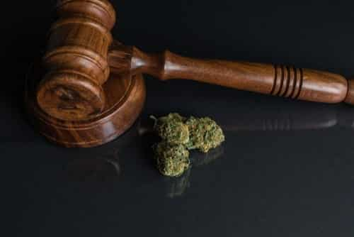 What are Defenses to Marijuana Possession in South Carolina?